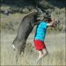 deer-hump2